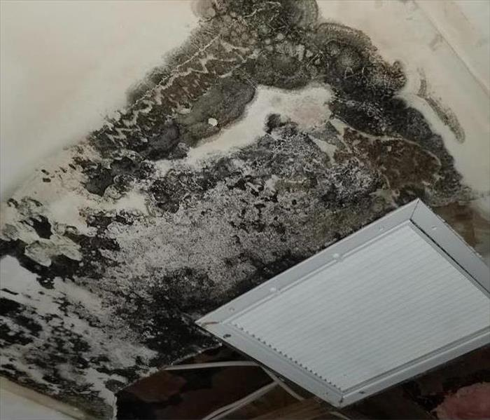 Water Damage in Boca Raton Ceiling