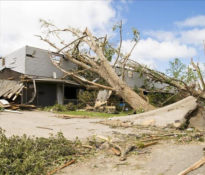 Storm Damage Detecting and Protecting Yourself From Flood damage in Fort Lauderdale After a storm