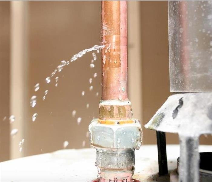 Water Damage Why You Need Professional Water Removal Services in Plantation
