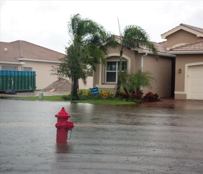 Storm Damage Cleaning Up Flood Damage in Your Ft. Lauderdale Home