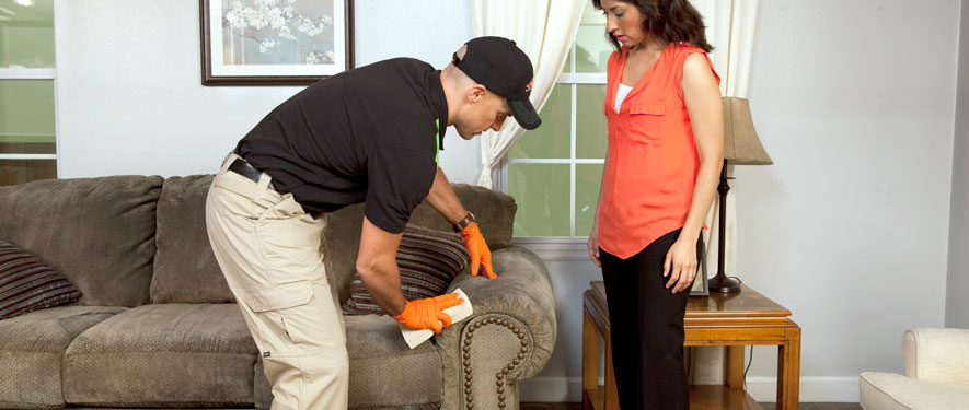 Ft. Lauderdale, FL carpet upholstery cleaning